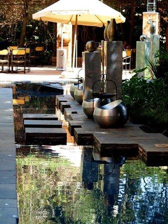 Hyatt Regency Johannesburg:                   outside garden of lobby lounge bar                 