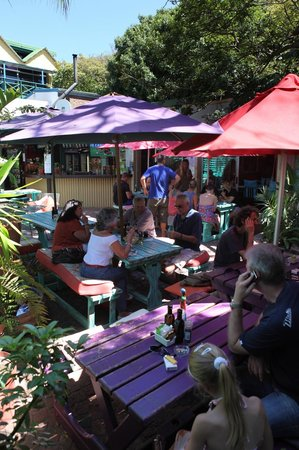 Cocomo Restaurant: Colourful court yard under old Cape Ash tree