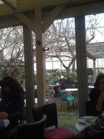 Erlanger TeeHaus:                   garden
