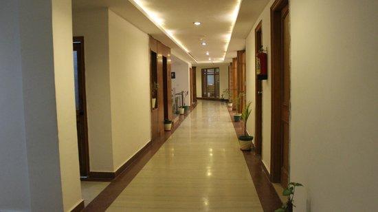 Hotel Padmini Palace: Corridor