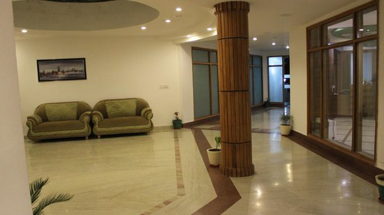 Hotel Padmini Palace: Lounge