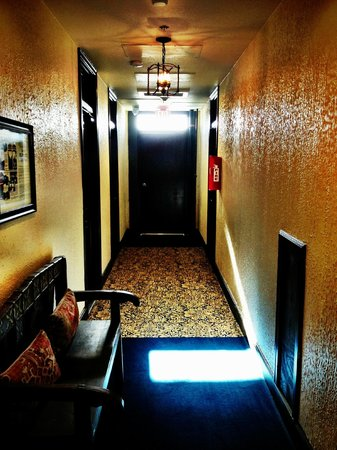 Holland Hotel:                   Hallway at The Holland