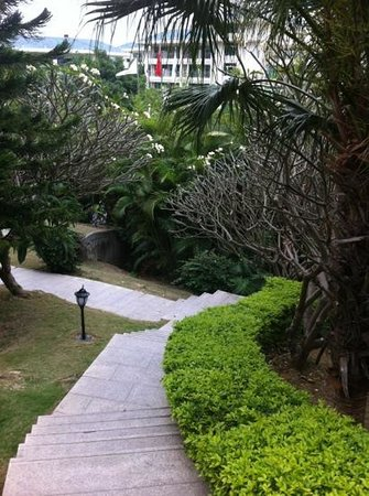 Royal Garden Resort:                   hotels garden