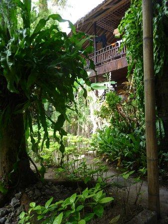 Orchids Resort:                                     de l'extérieur