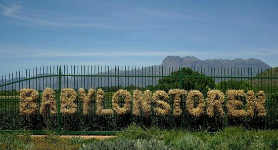 welcome to Babylonstoren