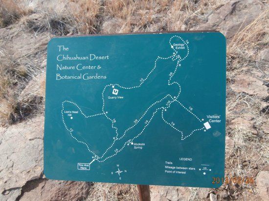 Trail Map for the Nature Center - Picture of Chihuahuan Desert, Big ...