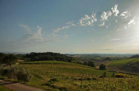 Villa Curina: View