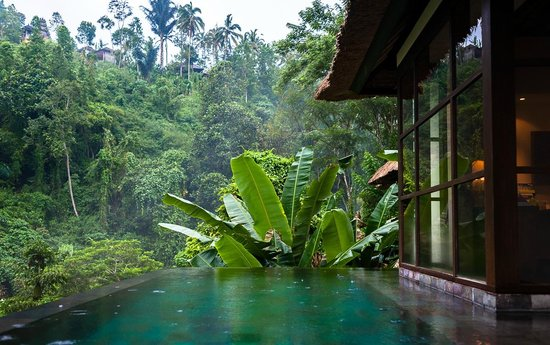 View of the private infinity pool picture of hanging gardens of bali payangan tripadvisor for Ubud hanging gardens swimming pool price