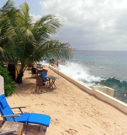Scuba Lodge & Suites:                   Small beach where you can eat or drink er just enjoy the sun