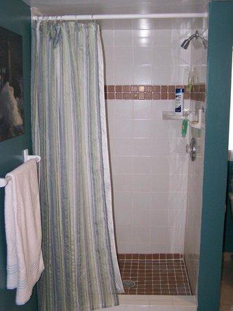 Parrottsville Inn: Shower / Grandmas guestroom