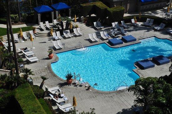 The Ritz-Carlton, Marina del Rey:                   Pool