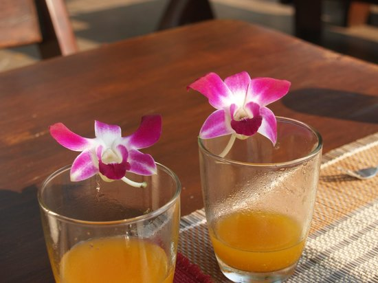 Oriental Kwai Resort:                   OJ with Orchids