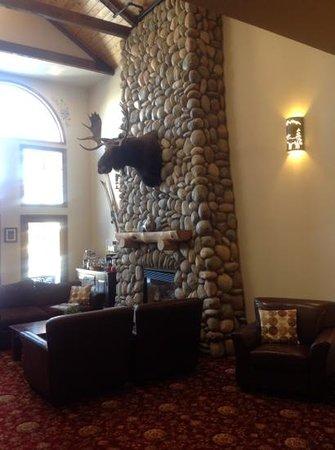 Hotel Frisco :                   moose