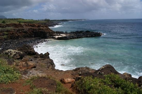 Kapaa Beach Shop :                   one if the reafs we snorked at
