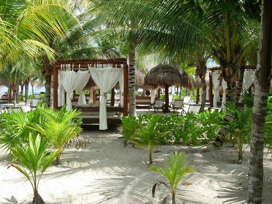 TRS Yucatan by Palladium:                                     Zona reservada Royal