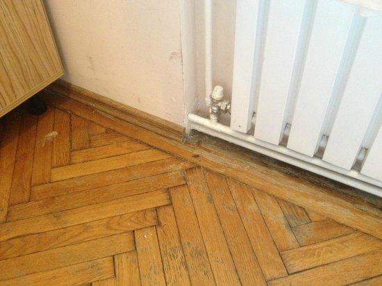 เซนทรูมส์เฮ้าส์:                   dettaglio pavimento