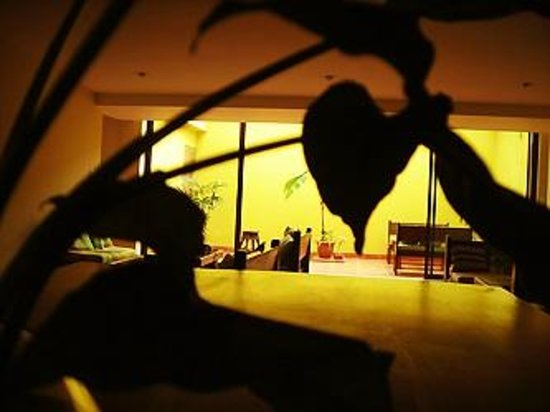 Costa Rica Guesthouse:                   sala grande