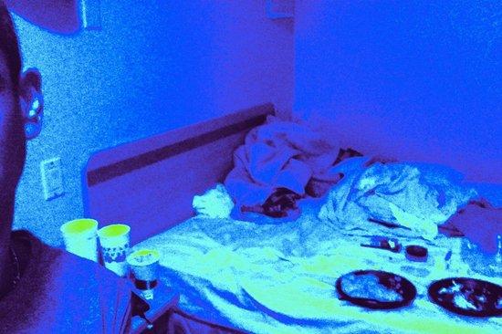 Motel 6 Lakeland :                   Proof of bacteria VIA  Black light