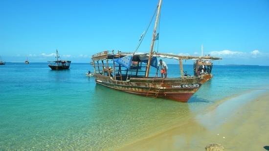 Arquipélago de Zanzibar, Tanzânia: down x prison island