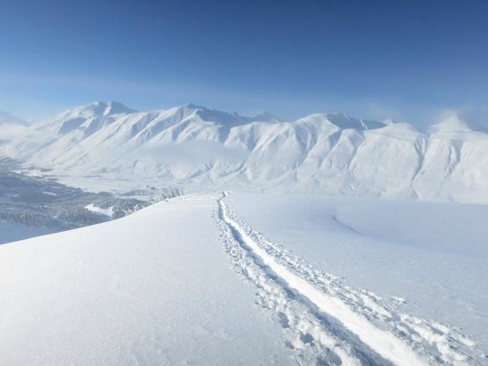 Wild Alpine - Day Tours:                   Skin slope over Turnagain Pass