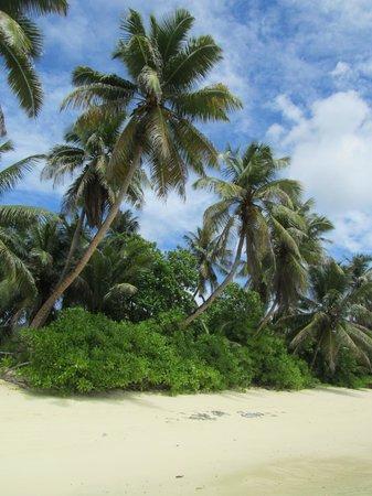 Chalets d'Anse Forbans: la spiaggia davanti agli chalets