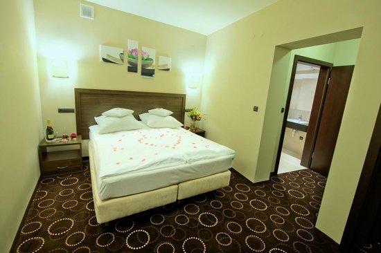 Hotel Zimnik : Apartament
