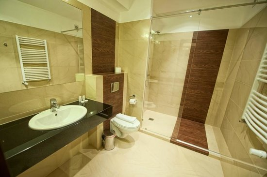 Hotel Zimnik : Bath