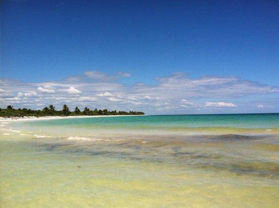 Las Palmas Maya:                   Lagoon meets ocean