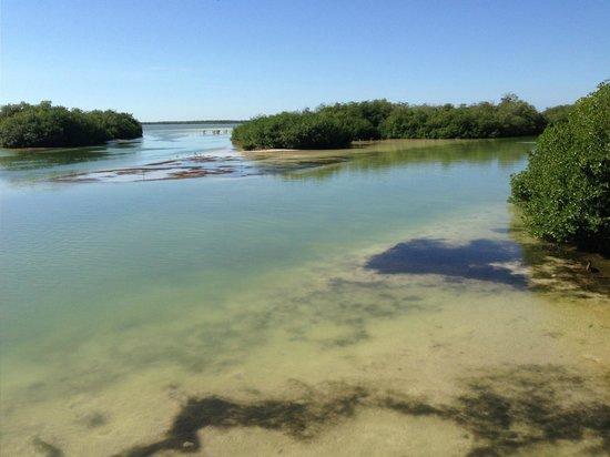 Las Palmas Maya:                   Sian Ka'an Lagoon