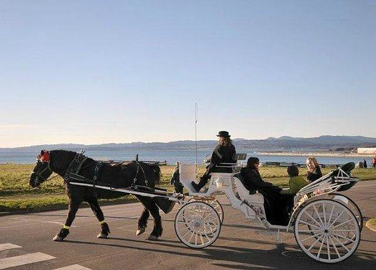 Seaside Suites: Horse drawn carriages passing by our oceanside heritage property