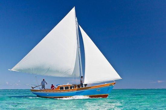 Sirena Azul Sailing Tours