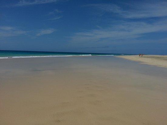 Crioula Club Hotel & Resort:                   Spiaggia fronte Crioula