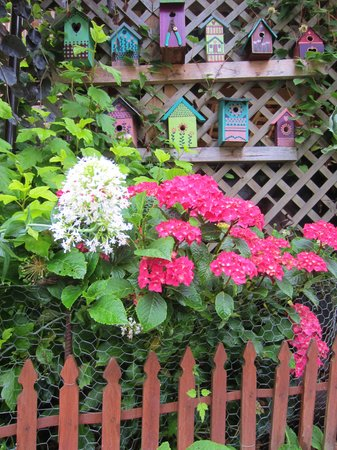 Farmhouse Bed & Breakfast: Birdhouse Garden