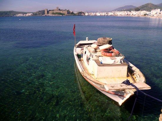 Bodrum City, Turkey:                                     marina