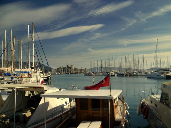 Bodrum City, Turkey:                                     marina