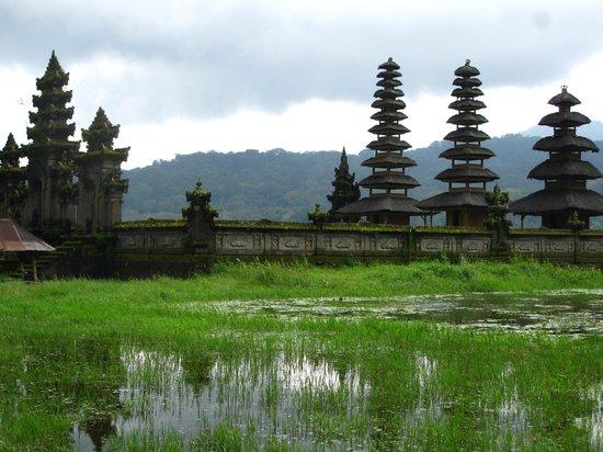 Nyoman Karsa Bungalows:                   Temple visit