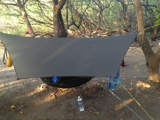 Camp Olowalu:                   hammock set up
