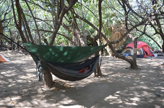 Camp Olowalu:                   another hammock shot