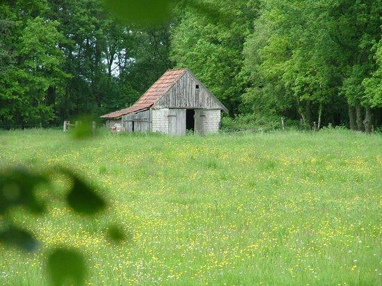 Zwillbrocker Venn:                                     Derilect farm house along the way