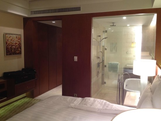 Manila Marriott Hotel:                   View of room and bathroom