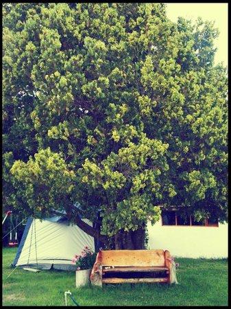 Hosteria Katy:                   Parte del hermoso patio