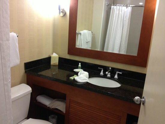 Hilton Tampa Downtown:                   Bathroom vanity