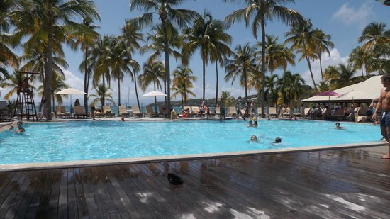 Club Med La Caravelle:                   piscine