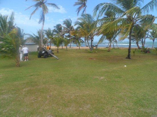 Coral Lodge:                   Área rectreativa
