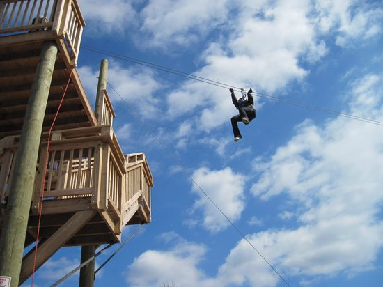 Bear Mountain Ziplines:                   The end of the big zipline