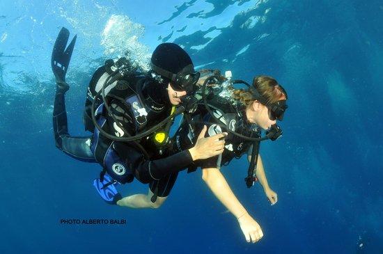 EASY DIVE Cannes: Baptême Plongée, Easy Dive