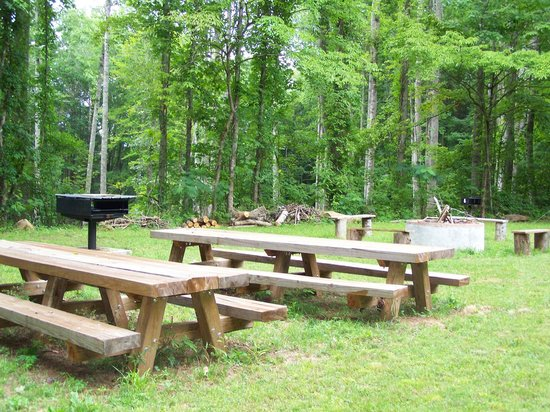 The Heart Center: Community Picnic Area