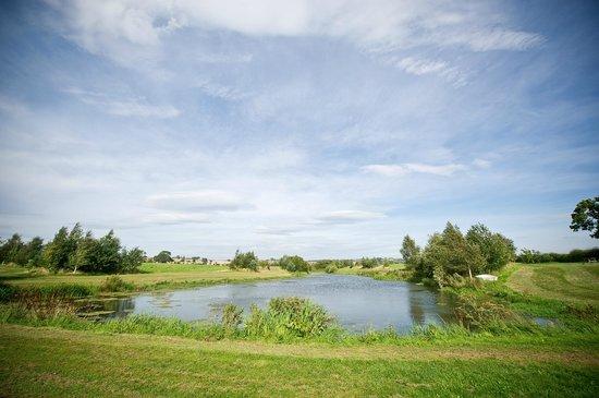 Thornton Lodge Farm B&B: Trout Fishing Lakes on the farm