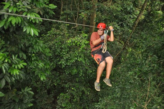Chiclets Tree Zipline :                   esto es lo mejor!!