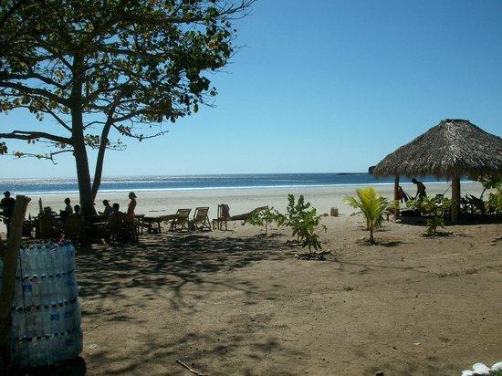 Playa Hermosa Beach Hotel:                   Nice views